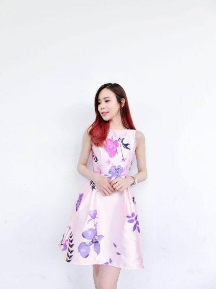 Lovelies Dress
